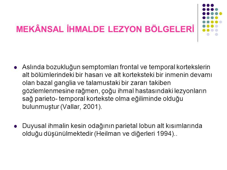 MEKÂNSAL İHMALDE LEZYON BÖLGELERİ