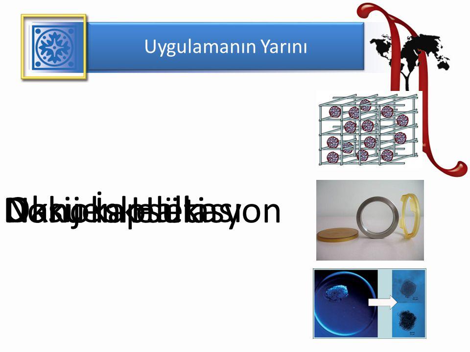 Uygulamanın Yarını Doku İskeleti Nanokapsülasyon Oksijen Halkası