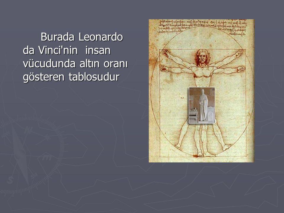 Burada Leonardo da Vinci nin insan vücudunda altın oranı gösteren tablosudur