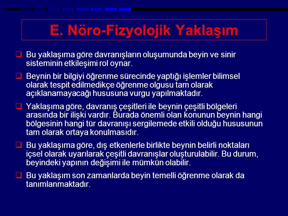 E. Nöro-Fizyolojik Yaklaşım
