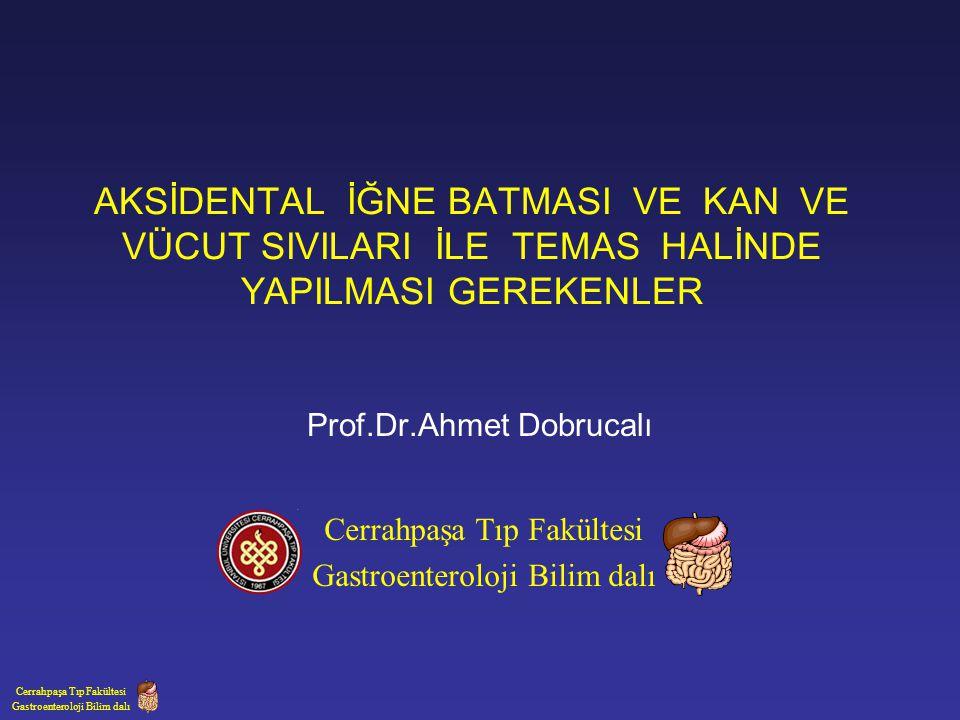 Prof.Dr.Ahmet Dobrucalı