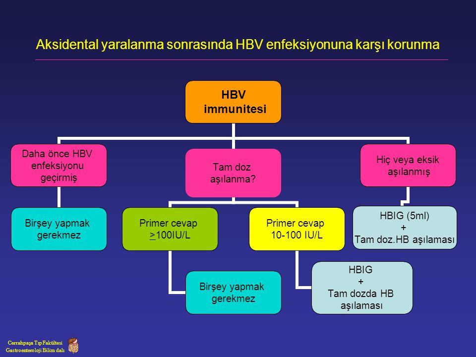 Aksidental yaralanma sonrasında HBV enfeksiyonuna karşı korunma
