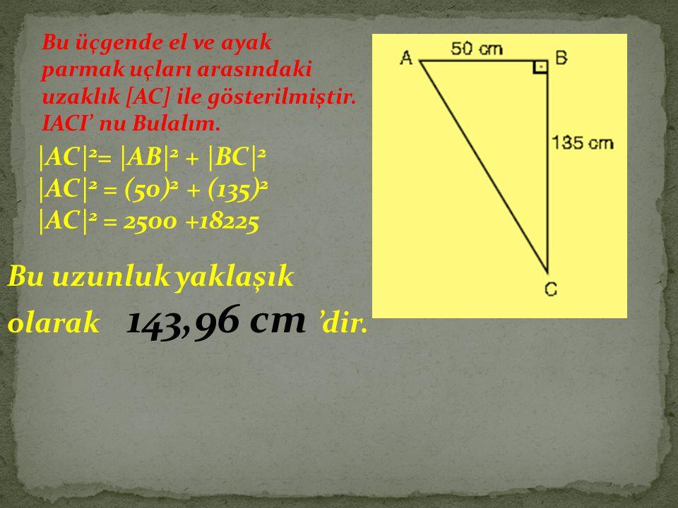 Bu uzunluk yaklaşık olarak 143,96 cm 'dir.