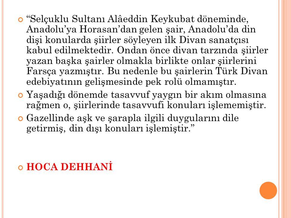 Selçuklu Sultanı Alâeddin Keykubat döneminde, Anadolu'ya Horasan'dan gelen şair, Anadolu'da din dişi konularda şiirler söyleyen ilk Divan sanatçısı kabul edilmektedir. Ondan önce divan tarzında şiirler yazan başka şairler olmakla birlikte onlar şiirlerini Farsça yazmıştır. Bu nedenle bu şairlerin Türk Divan edebiyatının gelişmesinde pek rolü olmamıştır.