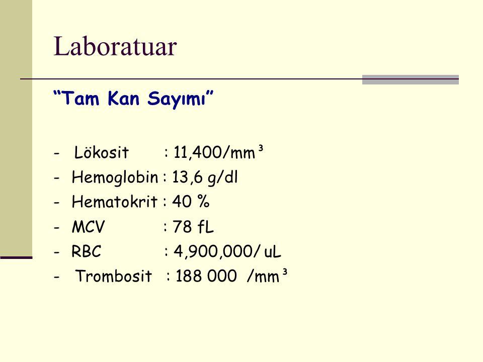 Laboratuar Tam Kan Sayımı - Lökosit : 11,400/mm³