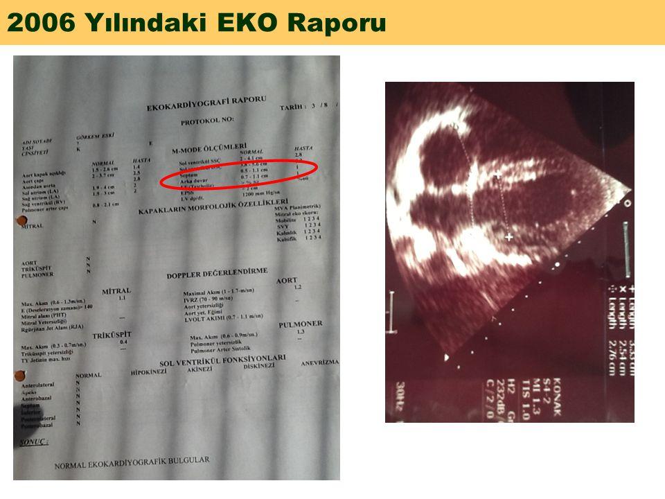 2006 Yılındaki EKO Raporu