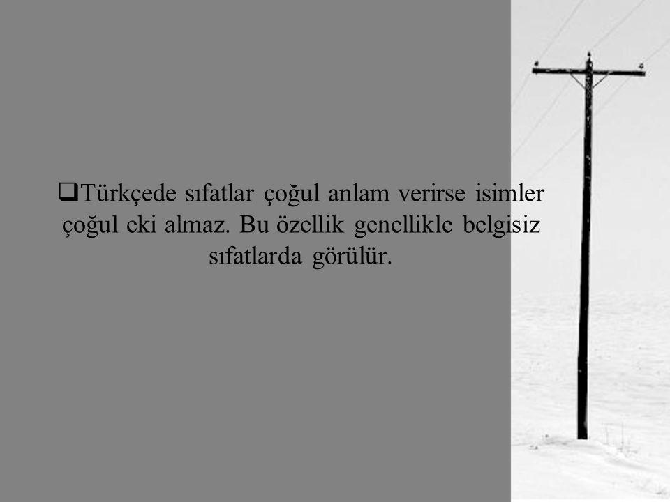 Türkçede sıfatlar çoğul anlam verirse isimler çoğul eki almaz