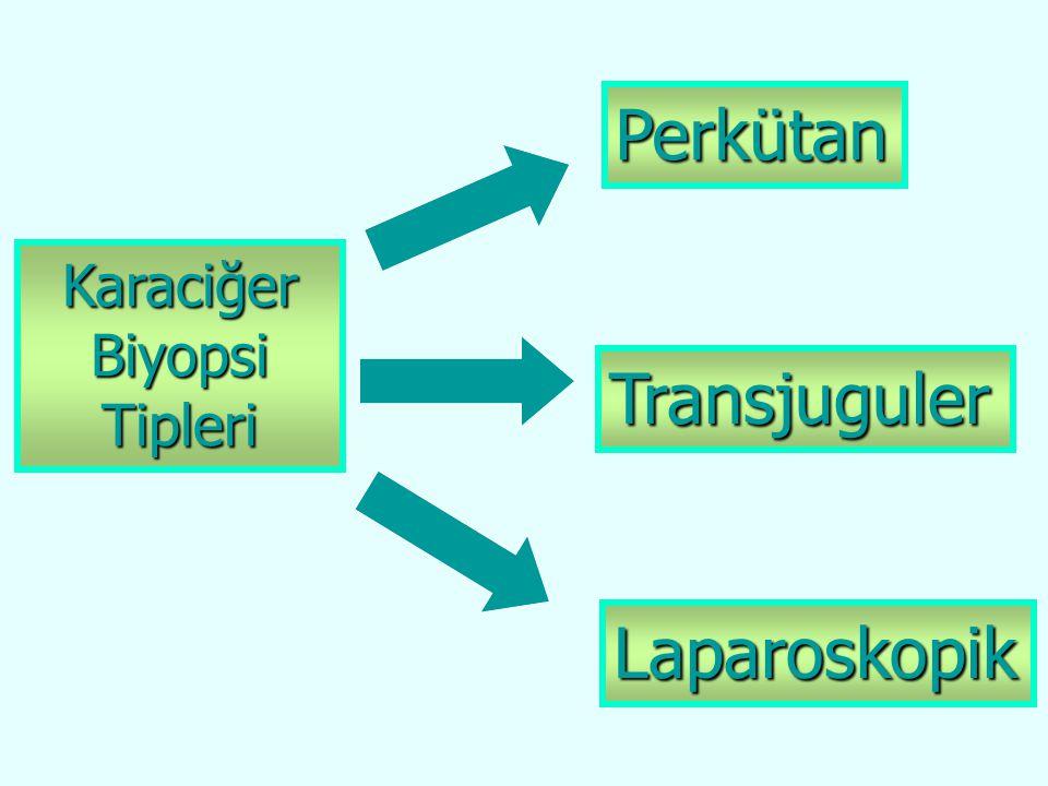 Perkütan Karaciğer Biyopsi Tipleri Transjuguler Laparoskopik