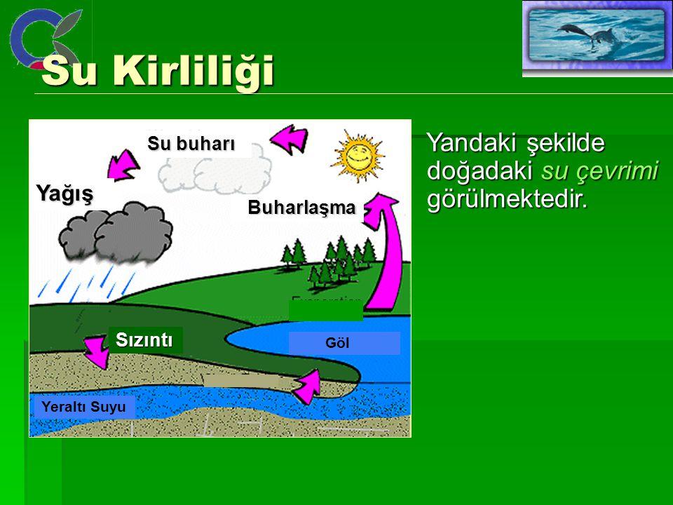 Su Kirliliği Yandaki şekilde doğadaki su çevrimi görülmektedir. Yağış