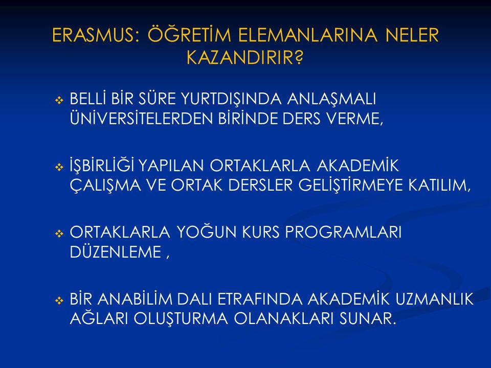 ERASMUS: ÖĞRETİM ELEMANLARINA NELER KAZANDIRIR