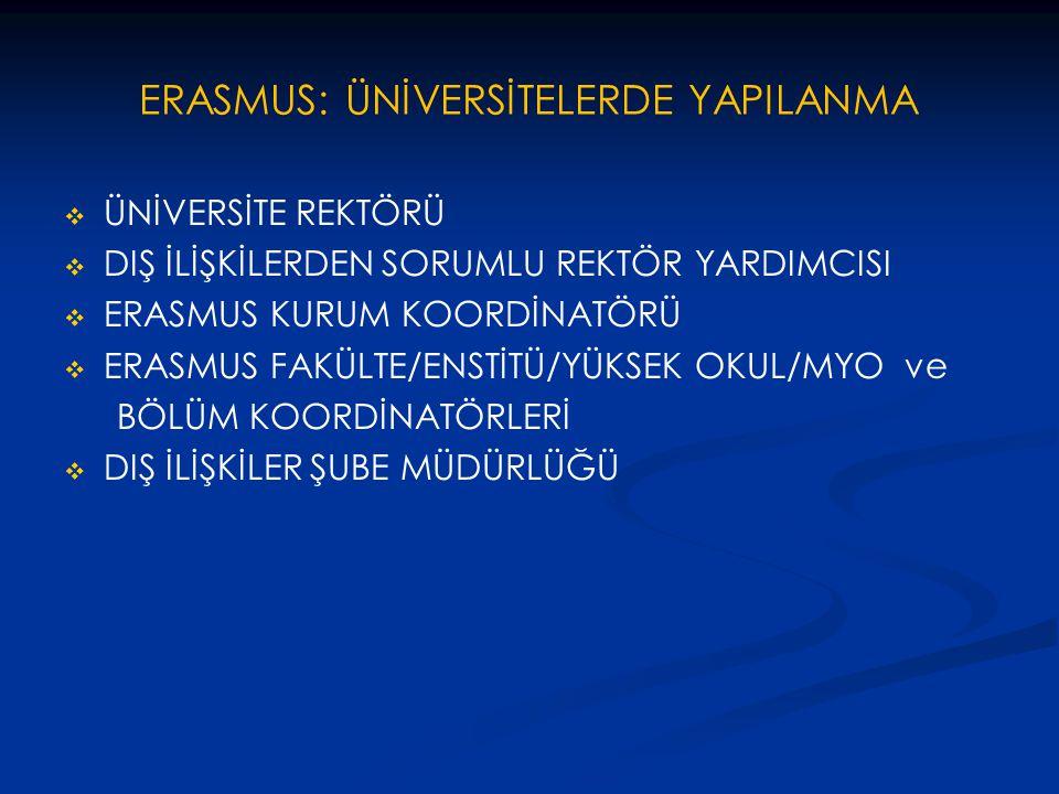 ERASMUS: ÜNİVERSİTELERDE YAPILANMA