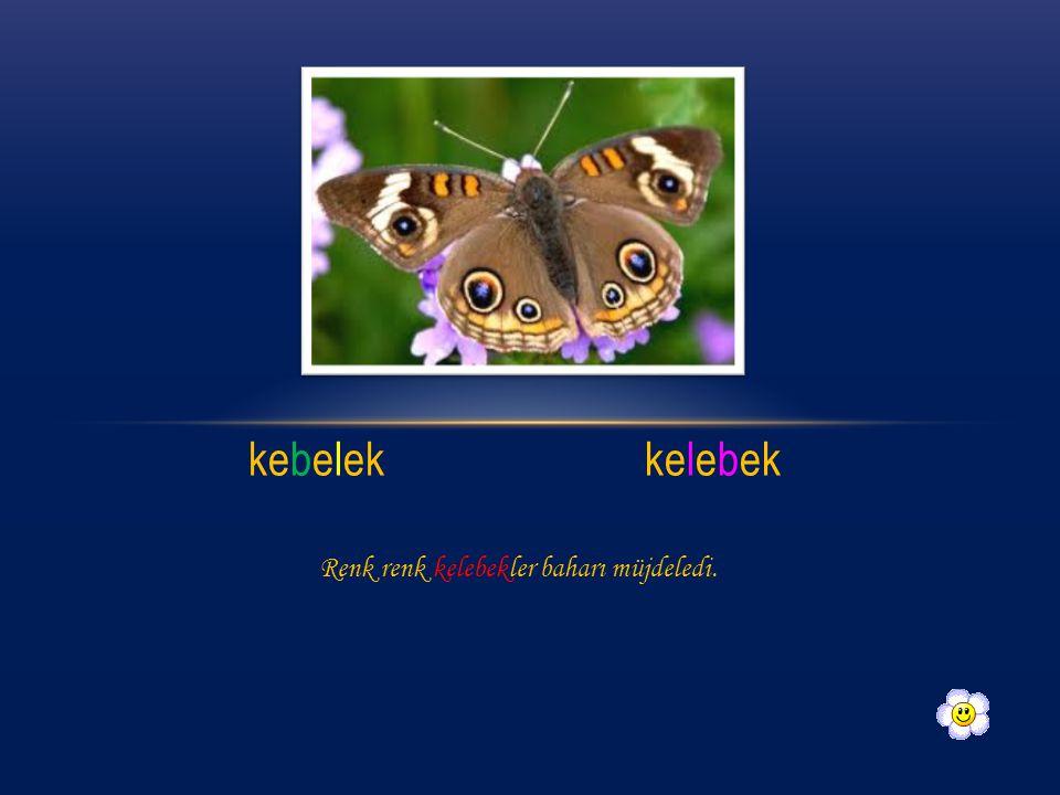 kebelek kelebek Renk renk kelebekler baharı müjdeledi.