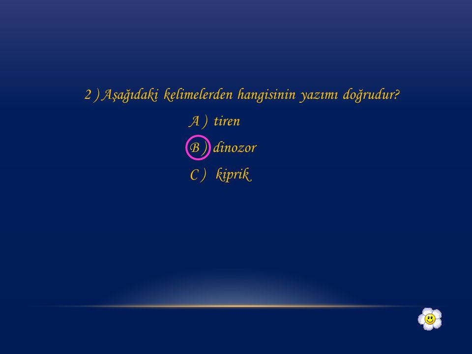 2 ) Aşağıdaki kelimelerden hangisinin yazımı doğrudur