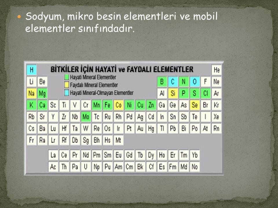 Sodyum, mikro besin elementleri ve mobil elementler sınıfındadır.