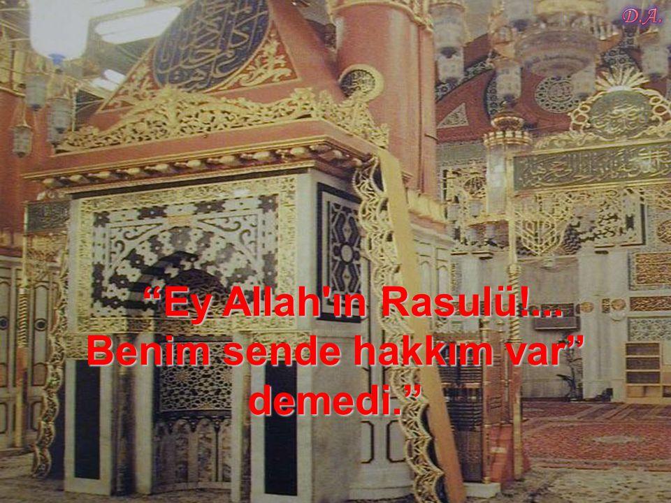 Ey Allah ın Rasulü!... Benim sende hakkım var demedi.