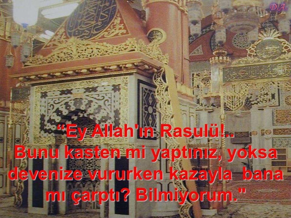 Ey Allah ın Rasulü!.. Bunu kasten mi yaptınız, yoksa devenize vururken kazayla bana mı çarptı Bilmiyorum.