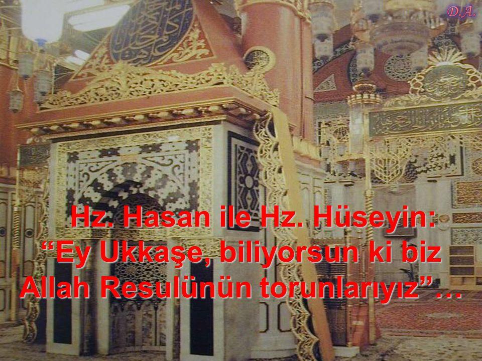 Hz. Hasan ile Hz. Hüseyin: Ey Ukkaşe, biliyorsun ki biz Allah Resulünün torunlarıyız …