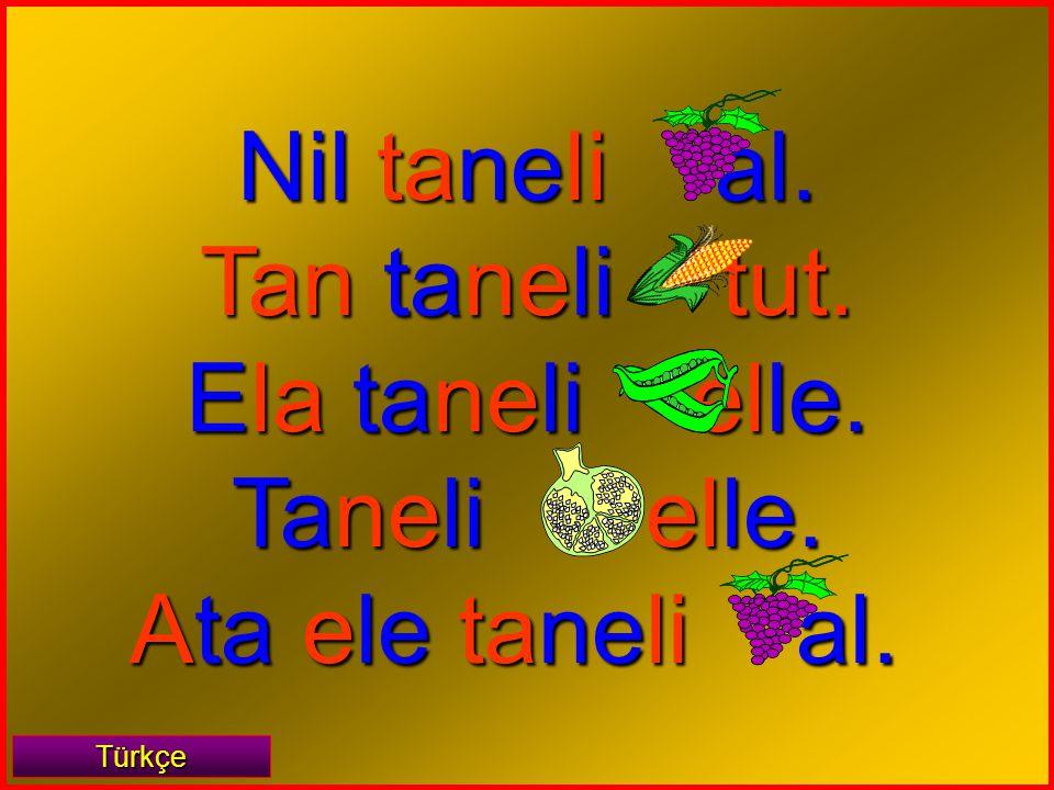 Nil taneli al. Tan taneli tut. Ela taneli elle. Taneli elle.