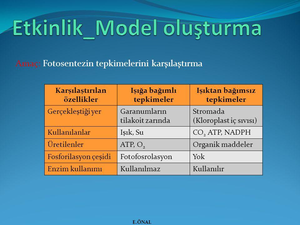 Etkinlik_Model oluşturma