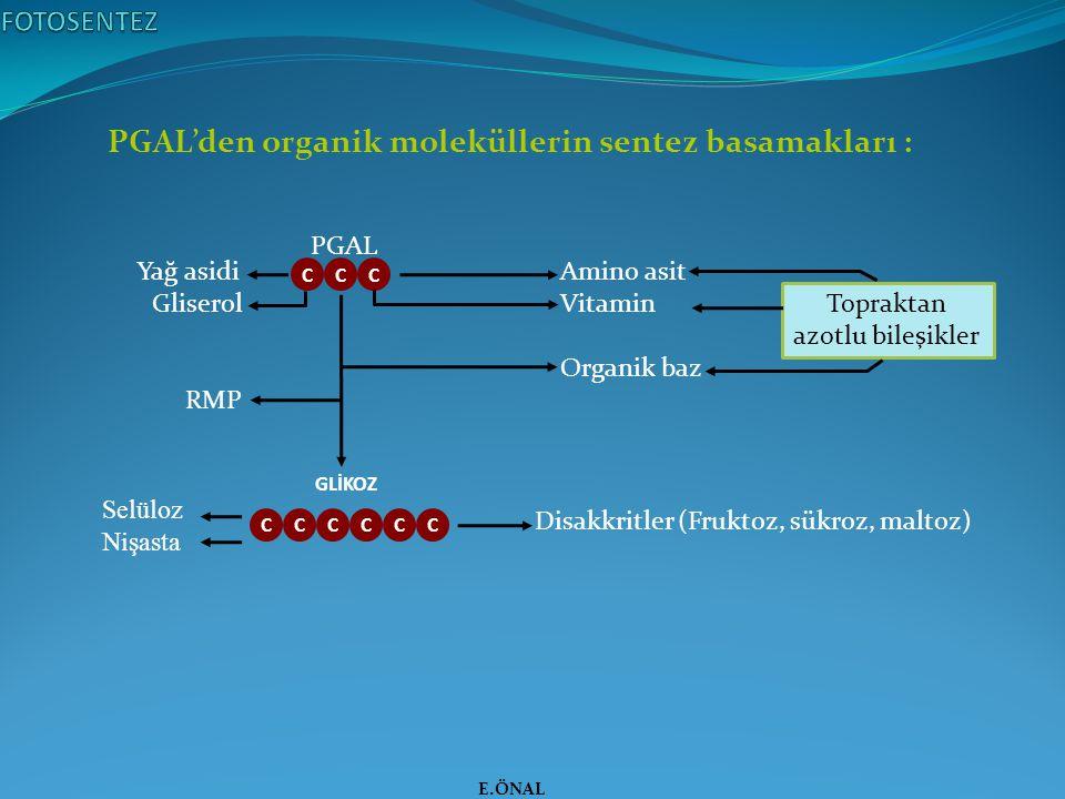 PGAL'den organik moleküllerin sentez basamakları :