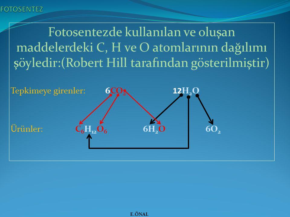 FOTOSENTEZ Fotosentezde kullanılan ve oluşan maddelerdeki C, H ve O atomlarının dağılımı şöyledir:(Robert Hill tarafından gösterilmiştir)