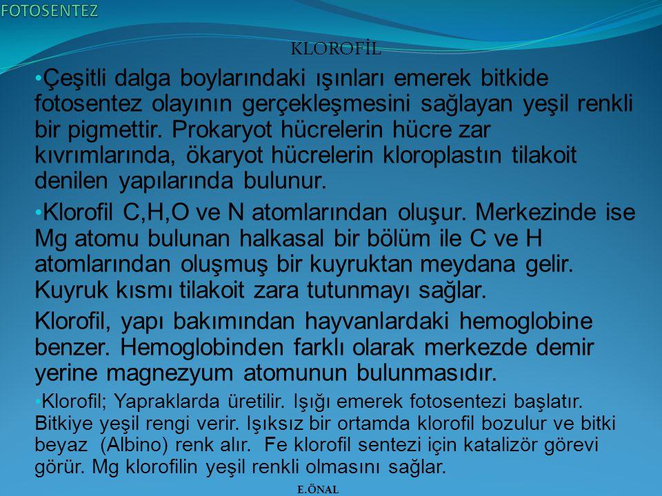 FOTOSENTEZ KLOROFİL.
