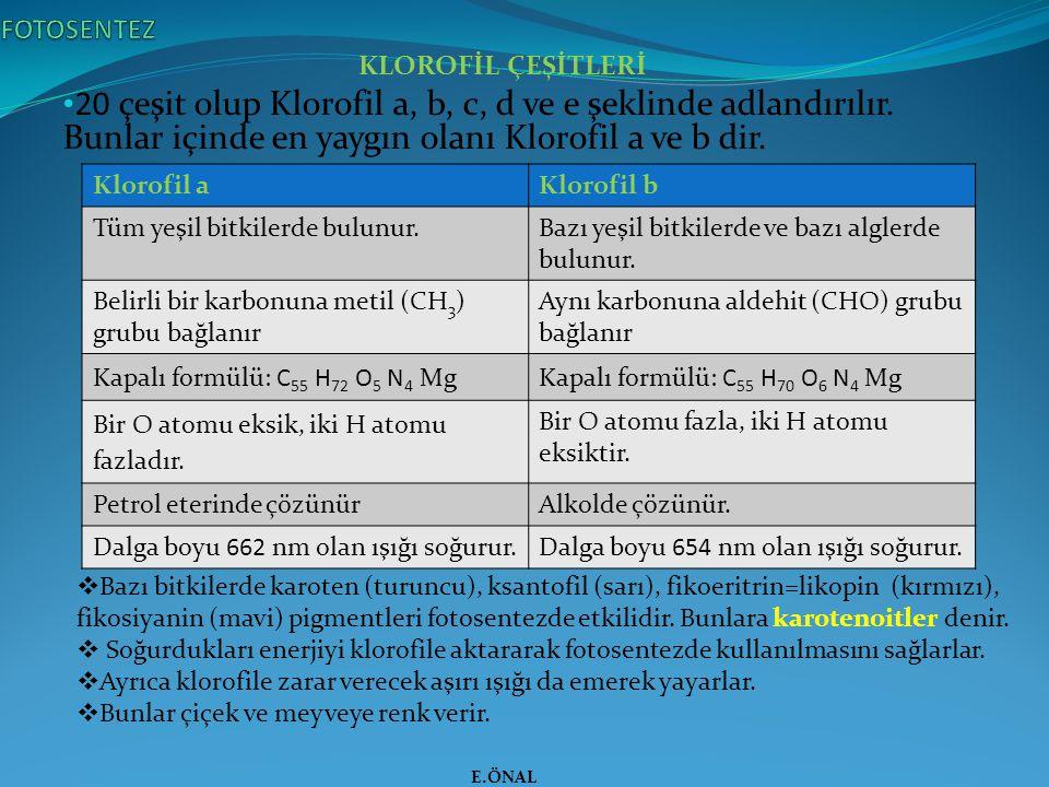 FOTOSENTEZ KLOROFİL ÇEŞİTLERİ. 20 çeşit olup Klorofil a, b, c, d ve e şeklinde adlandırılır. Bunlar içinde en yaygın olanı Klorofil a ve b dir.