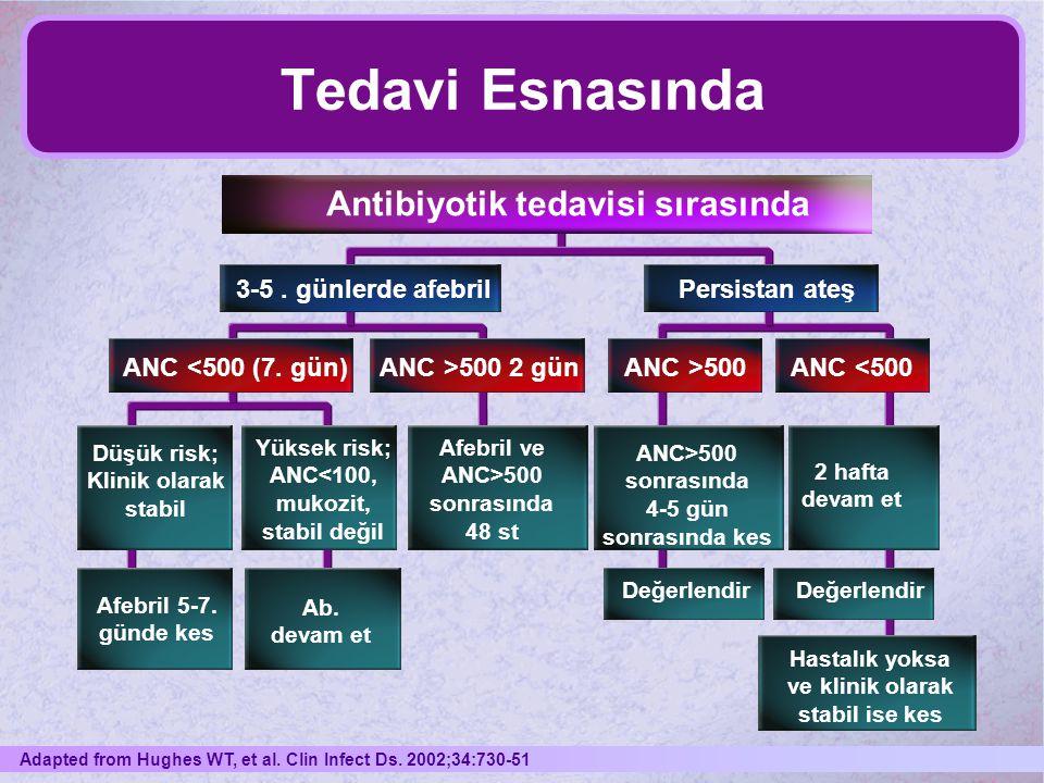 Tedavi Esnasında Antibiyotik tedavisi sırasında 3-5 . günlerde afebril