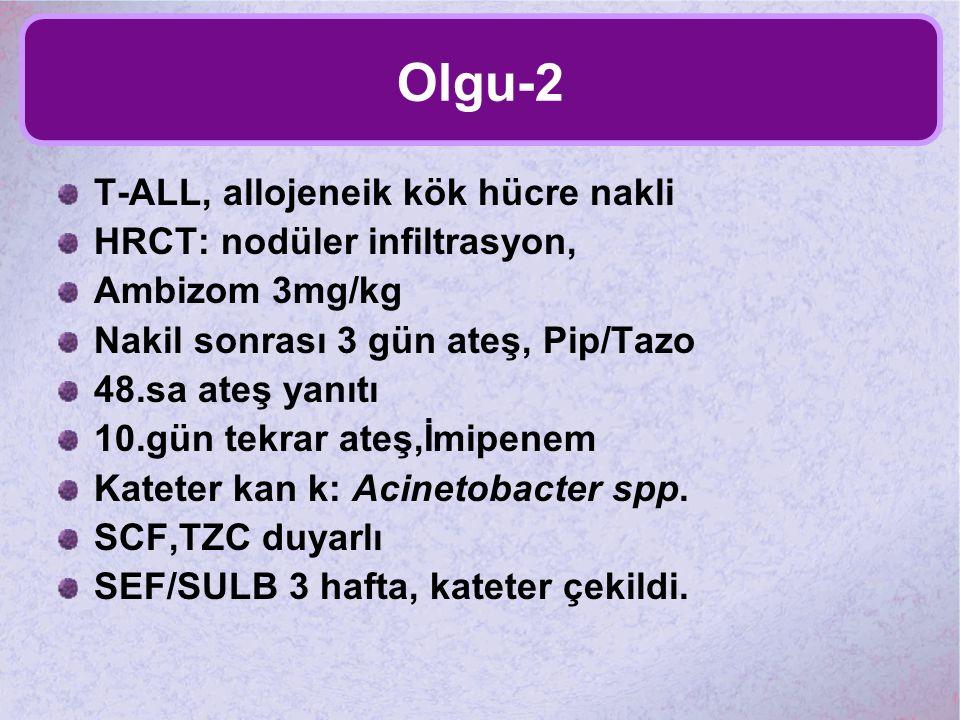 Olgu-2 T-ALL, allojeneik kök hücre nakli HRCT: nodüler infiltrasyon,