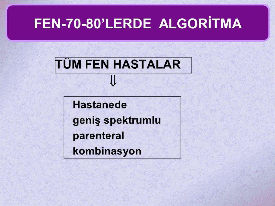 FEN-70-80'LERDE ALGORİTMA