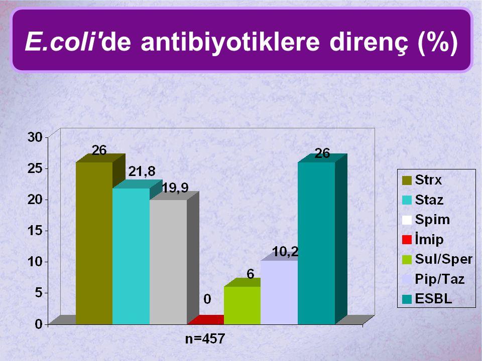 E.coli de antibiyotiklere direnç (%)