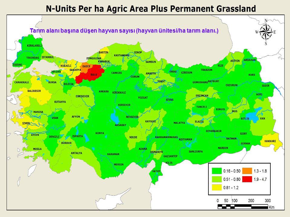 Tarım alanı başına düşen hayvan sayısı (hayvan ünitesi/ha tarım alanı