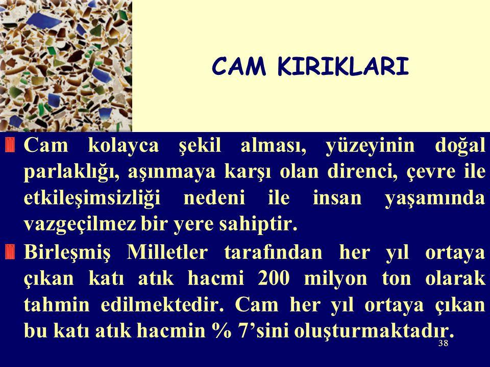 CAM KIRIKLARI
