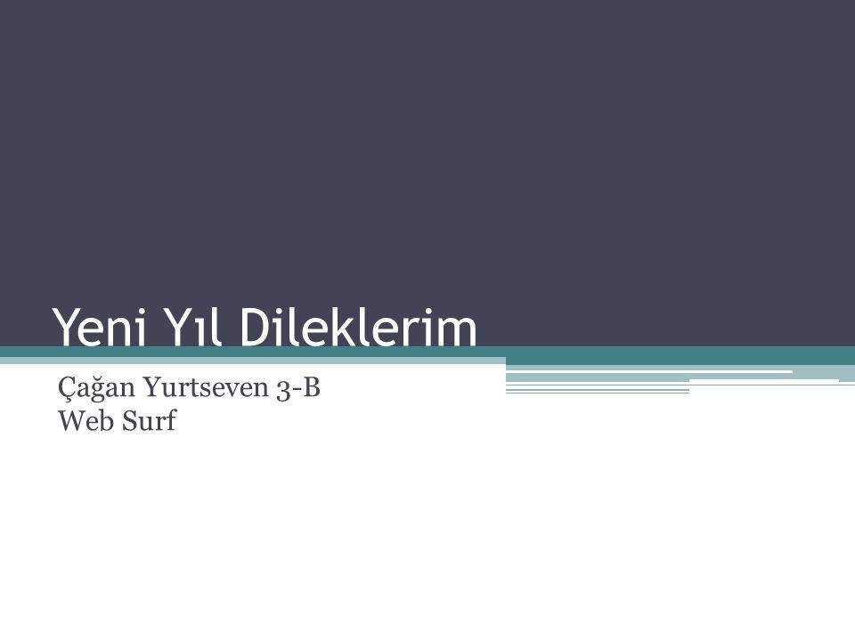 Çağan Yurtseven 3-B Web Surf