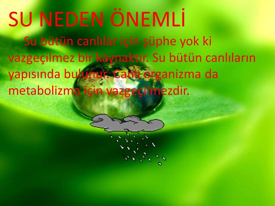 SU NEDEN ÖNEMLİ