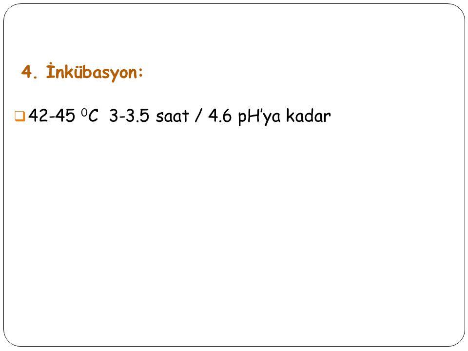 4. İnkübasyon: 42-45 0C 3-3.5 saat / 4.6 pH'ya kadar