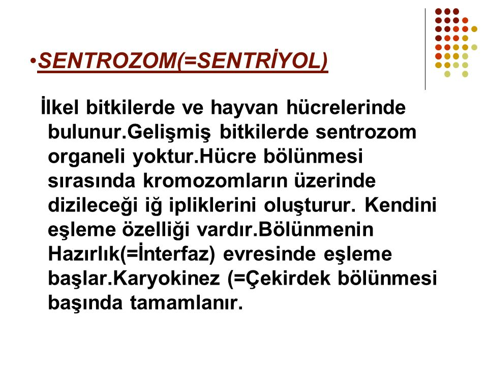 SENTROZOM(=SENTRİYOL)