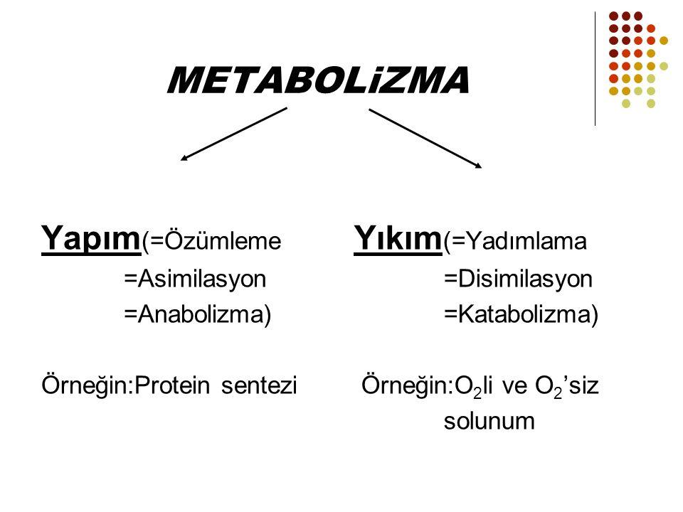 METABOLiZMA Yapım(=Özümleme Yıkım(=Yadımlama =Asimilasyon =Anabolizma)
