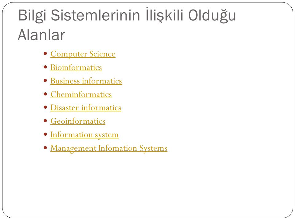 Bilgi Sistemlerinin İlişkili Olduğu Alanlar