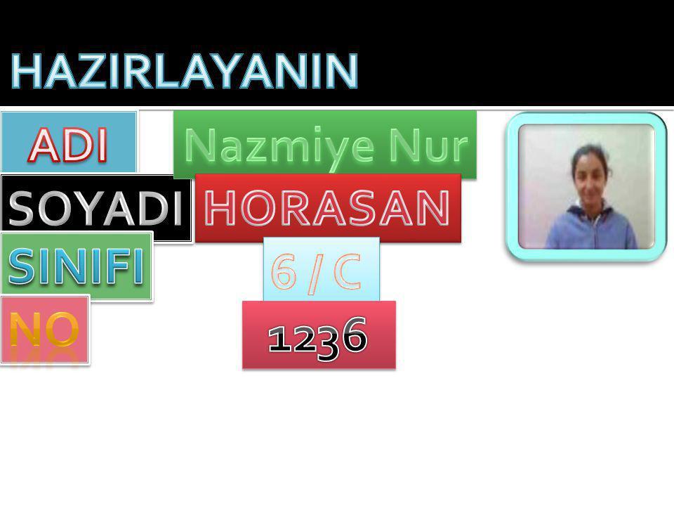HAZIRLAYANIN ADI Nazmiye Nur SOYADI HORASAN SINIFI 6 / C NO 1236
