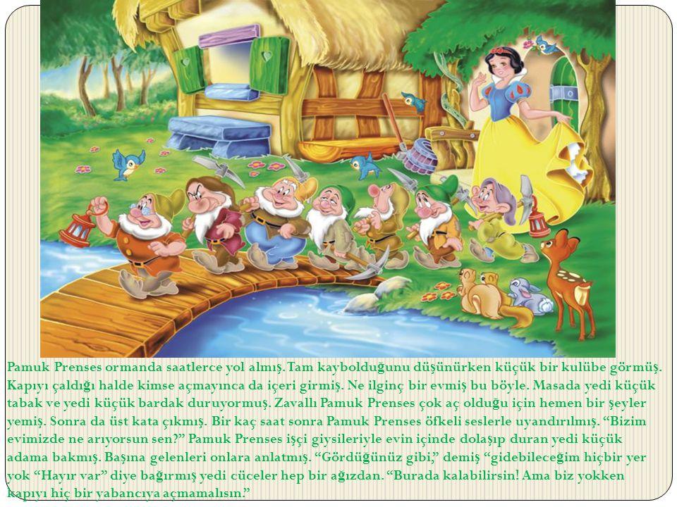 Pamuk Prenses ormanda saatlerce yol almış