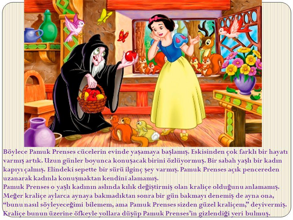 Böylece Pamuk Prenses cücelerin evinde yaşamaya başlamış