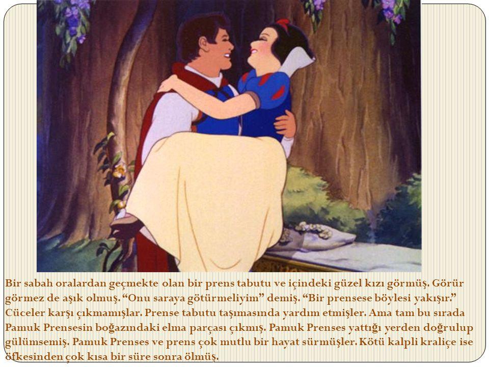 Bir sabah oralardan geçmekte olan bir prens tabutu ve içindeki güzel kızı görmüş.