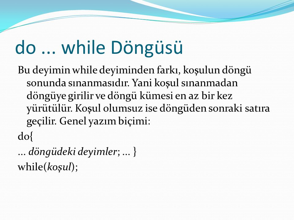 do ... while Döngüsü