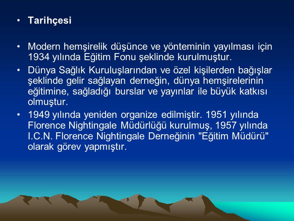 Tarihçesi Modern hemşirelik düşünce ve yönteminin yayılması için 1934 yılında Eğitim Fonu şeklinde kurulmuştur.