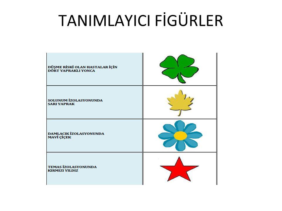 TANIMLAYICI FİGÜRLER