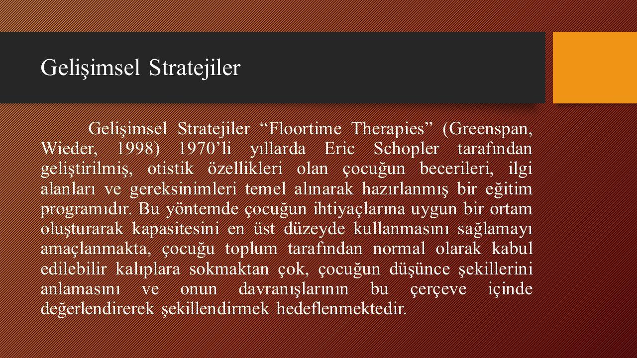 Gelişimsel Stratejiler