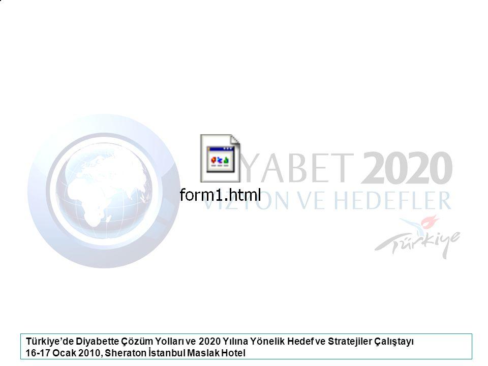 16-17 Ocak 2010, Sheraton İstanbul Maslak Hotel