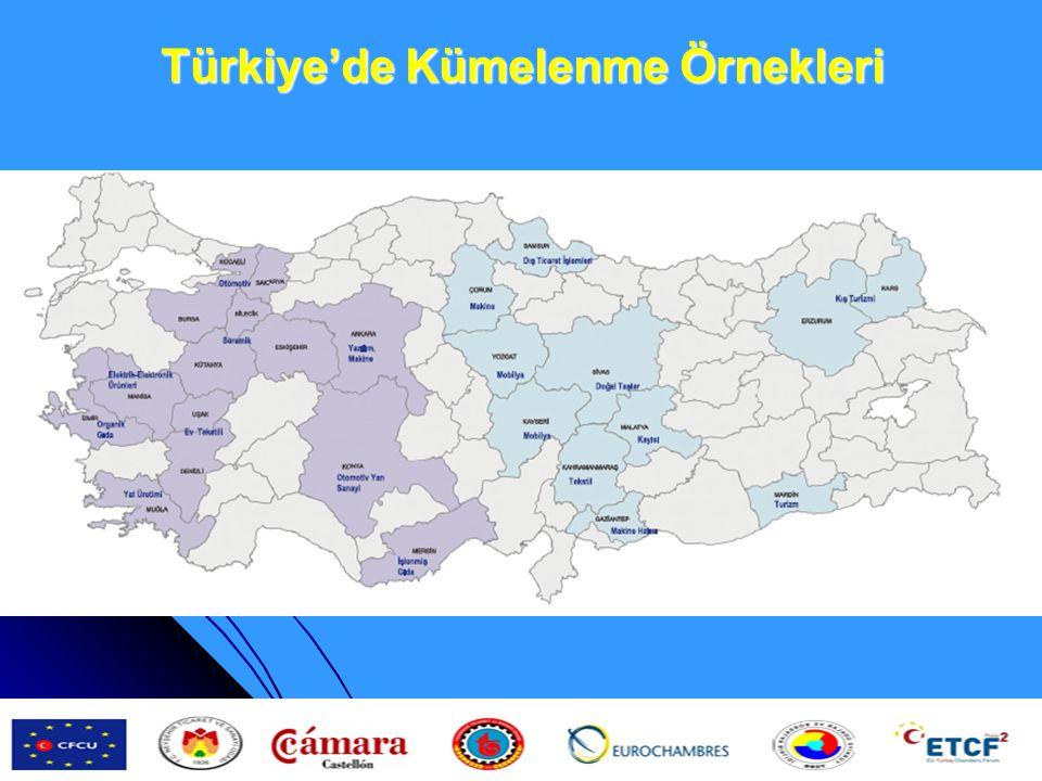 Türkiye'de Kümelenme Örnekleri