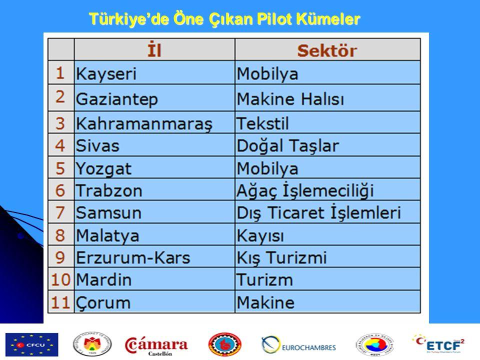 Türkiye'de Öne Çıkan Pilot Kümeler
